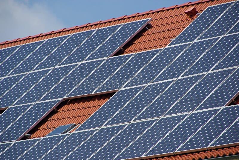 Pianta solare 35 fotografie stock libere da diritti