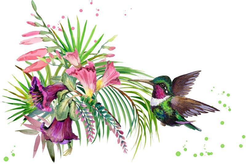Pianta uccello e fiori della giungla hummingbird for Pianta della foresta di pioppo