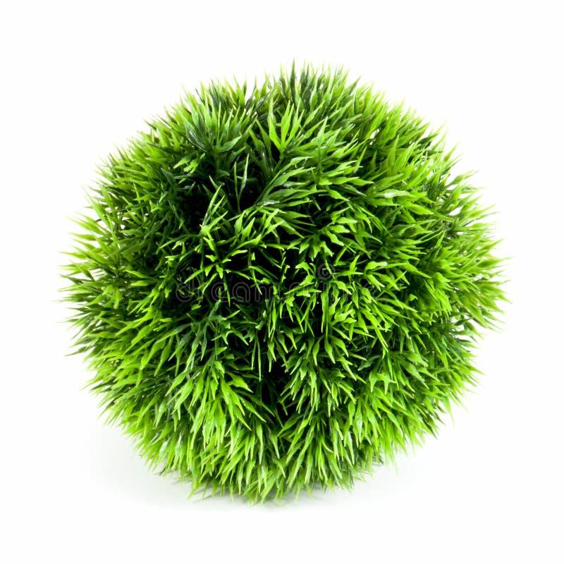 Pianta verde artificiale nella forma della palla immagini stock
