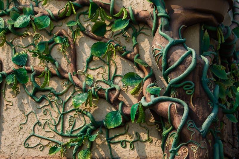 Pianta verde dell'edera sul vecchio muro di cinta fotografie stock