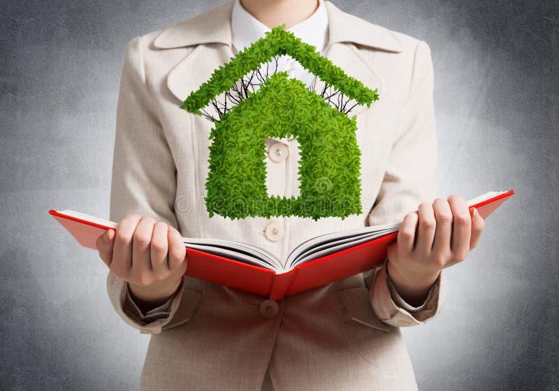 Pianta verde di rappresentazione dell'agente immobiliare fotografia stock