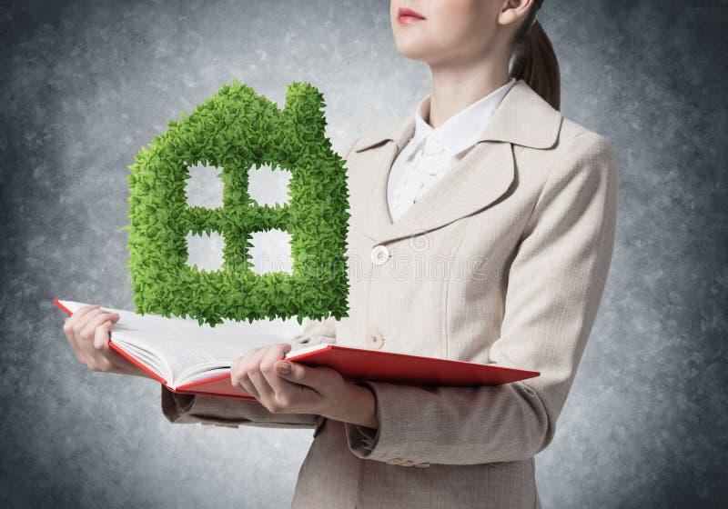 Pianta verde di rappresentazione dell'agente immobiliare fotografia stock libera da diritti