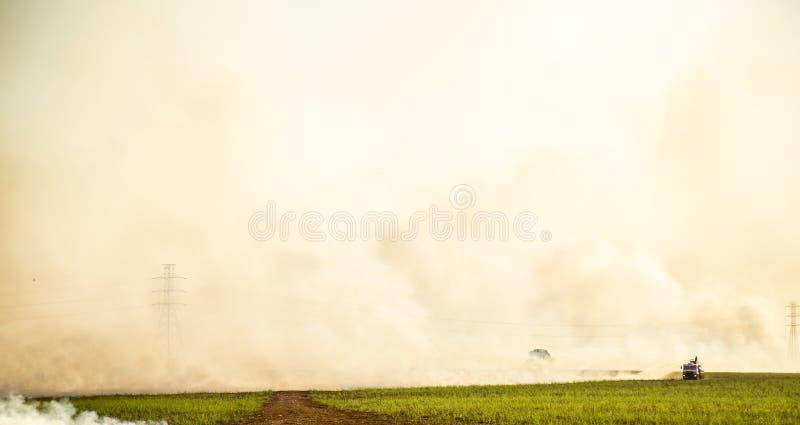 Piantagione del fuoco della canna da zucchero immagine stock libera da diritti