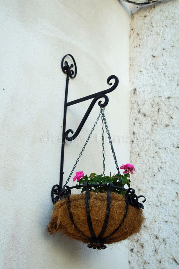Piantatrice appesa con i fiori viola fotografia stock libera da diritti