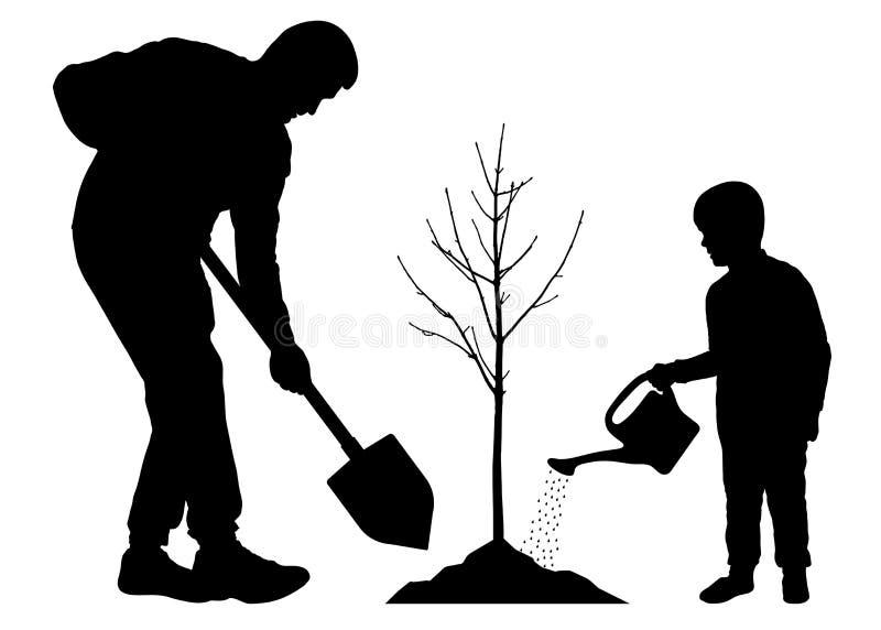 Piantatura dell'albero con il bambino Pianta del figlio e del padre una piantina dell'albero Vettore della siluetta su fondo bian illustrazione di stock