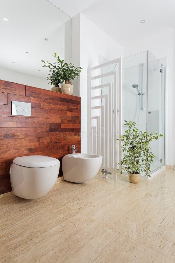 Piante in bagno fotografia stock immagine di bathroom - Piante in bagno ...