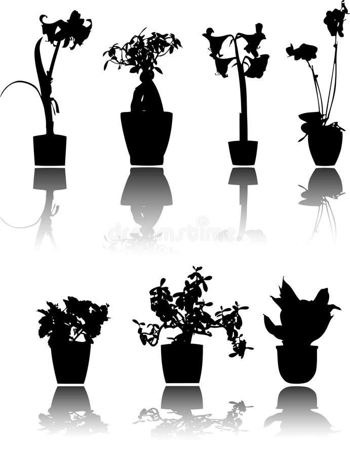 Piante conservate in vaso illustrazione di stock