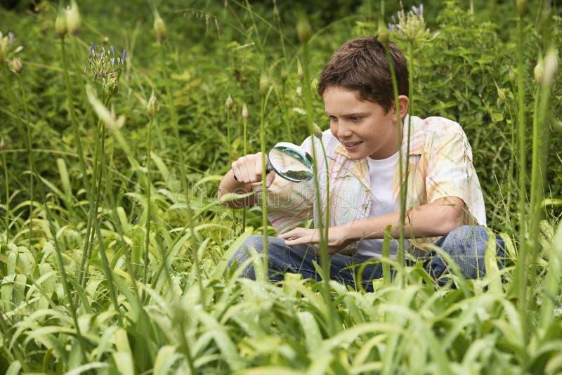 Piante d'esame del ragazzo con una lente d'ingrandimento fotografia stock libera da diritti
