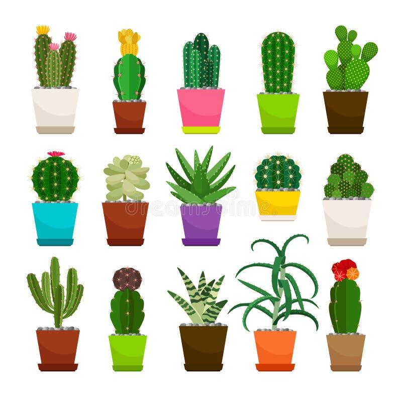 Piante da appartamento del cactus in vasi da fiori messi illustrazione vettoriale