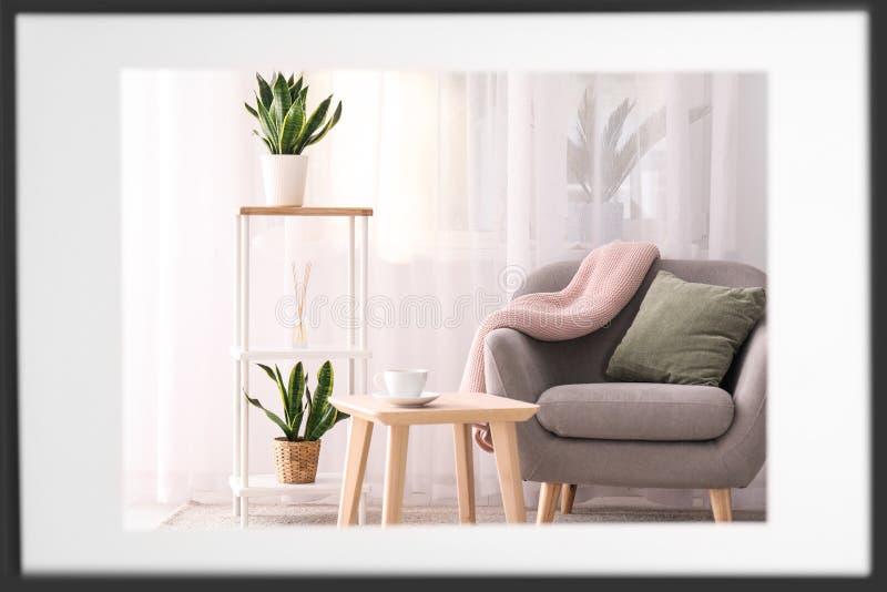 Piante decorative di sansevieria nell'interno di stanza immagini stock