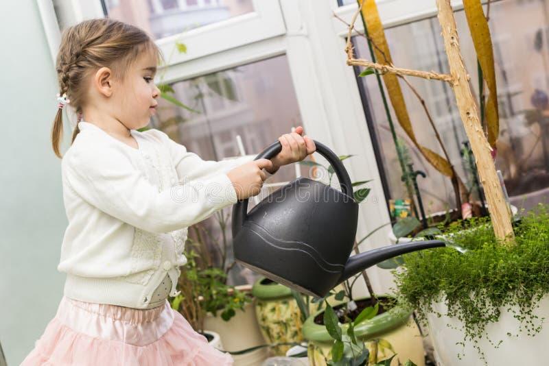 Piante di innaffiatura sveglie della bambina nella sua casa fotografie stock libere da diritti