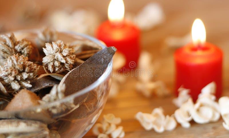 Piante e candele secche fotografia stock libera da diritti