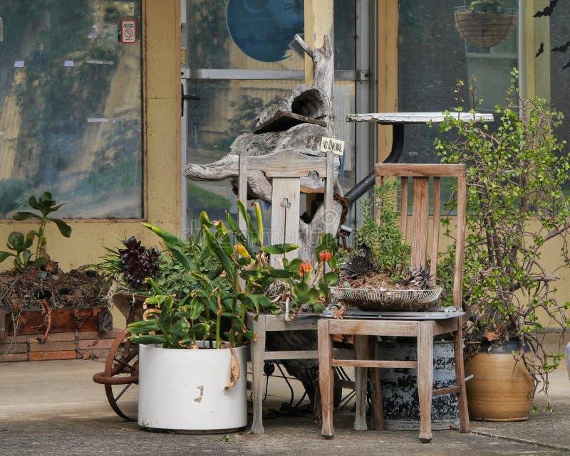 Piante e poltrone come parte di un negozio fiorista di Whittlesea Victoria Australia fotografia stock libera da diritti