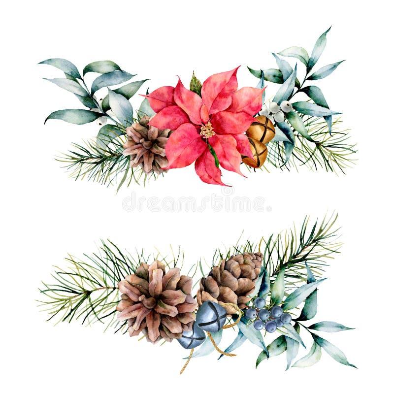 Piante floreali di inverno dell'acquerello su fondo bianco Insieme d'annata di stile con i rami dell'albero di Natale, foglie del royalty illustrazione gratis