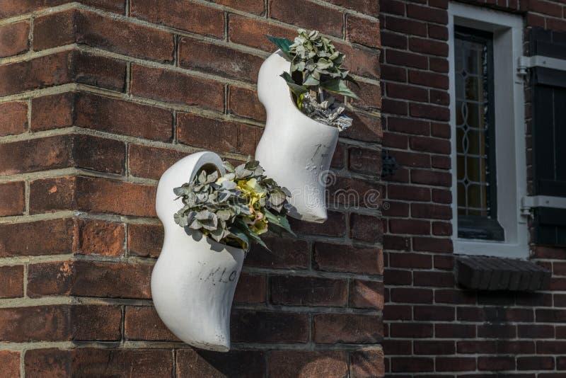 Piante in scarpe di legno olandesi tipiche su un muro di mattoni fotografia stock