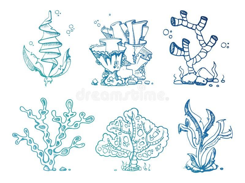 Piante subacquee delle alghe luminose di scarabocchio royalty illustrazione gratis