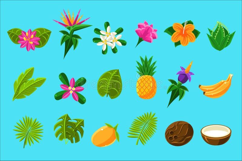 Piante tropicali e frutti messi illustrazione di stock