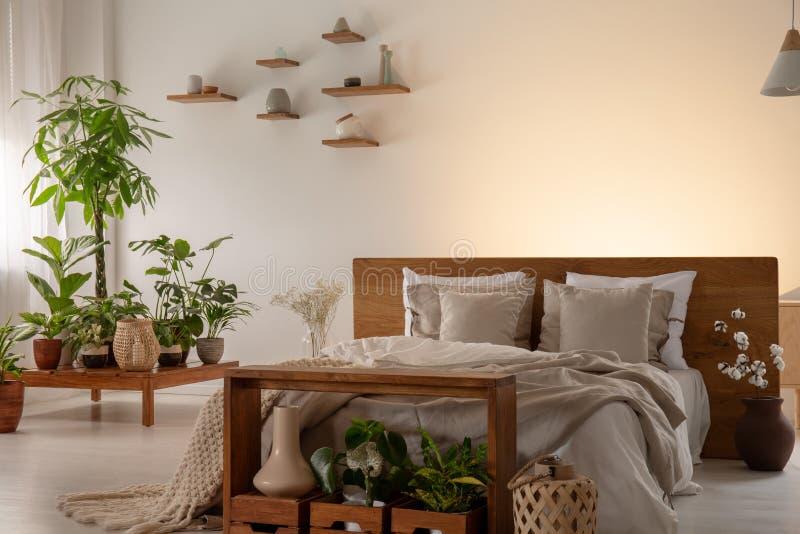 Piante in un interno moderno della camera da letto con un letto comodo decorato con i cuscini e la parete vuota nei precedenti Di fotografie stock