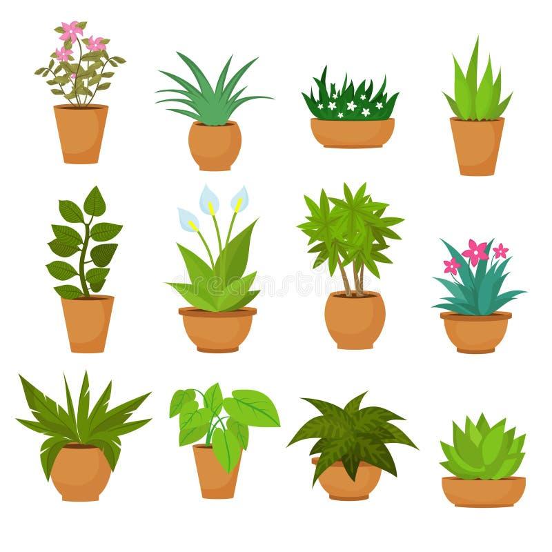 Piante in vaso dell'interno ed all'aperto del giardino del paesaggio isolate su bianco Insieme di vettore illustrazione di stock