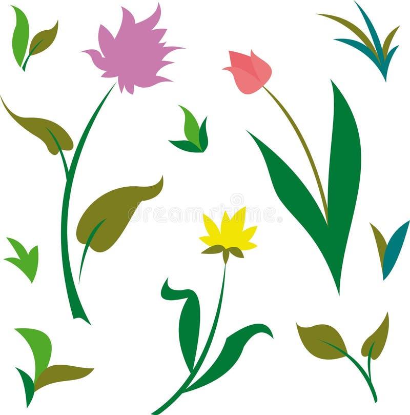 Piante verdi di estate & della primavera e fiori (vettore) illustrazione vettoriale