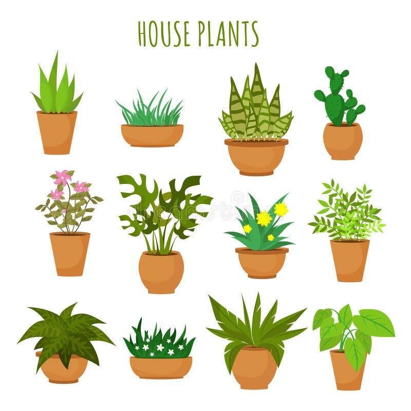 Piante verdi e fiori della casa dell'interno isolati sull'insieme bianco di vettore illustrazione di stock