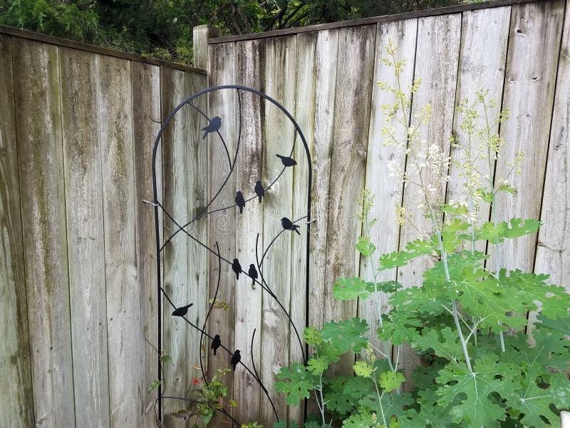 Piante verdi, recinto di legno e traliccio o grata dell'uccello del metallo immagine stock libera da diritti