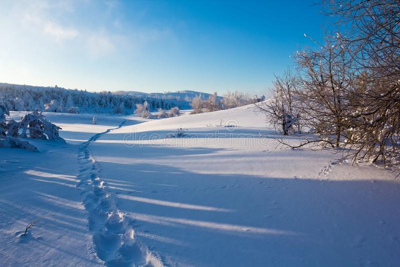 Pianura Snowbound fotografie stock libere da diritti