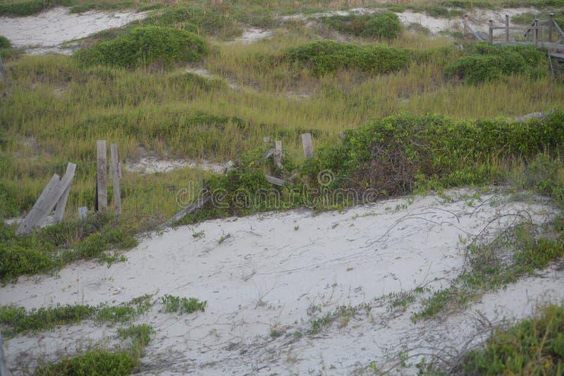 Piasek diuna siedzi pod drewnianymi boardwalks które wykładają Północnego Floryda nabrzeżne obrazy royalty free