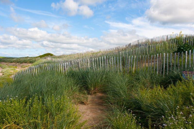 Piasek diuny konserwaci miary na plaży w Lahinch w zachodzie Irlandia zdjęcie royalty free