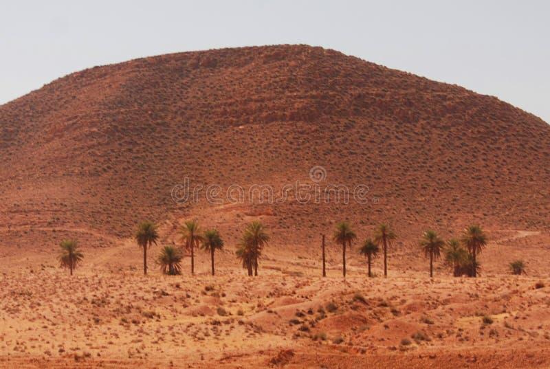 Piasek diuny, Matmata, Południowy Tunezja obrazy royalty free
