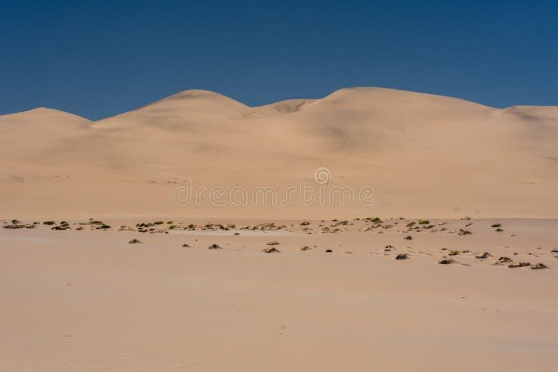 Piasek diuny od drogi blisko Walvis zatoki, Namibia zdjęcia royalty free