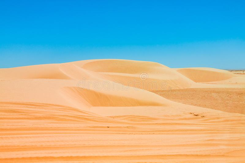 Piasek diuny sahara blisko Ong Jemel w Tozeur, Tunezja obraz royalty free