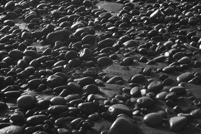 Piasek i kamienie w plaży w czarny i biały zdjęcie stock