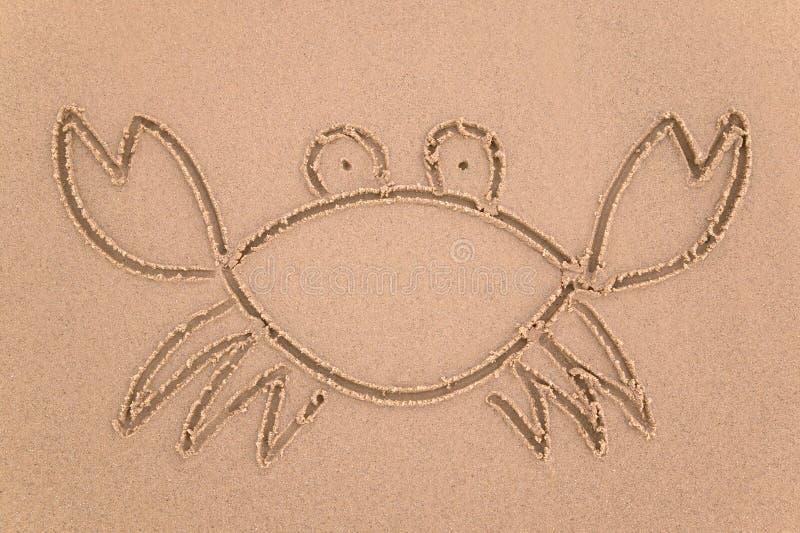 piasek kraba obraz royalty free