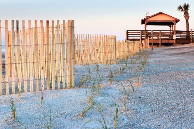 Piasek ono fechtuje się i Nowy rośliny głupoty plaży SC obrazy stock