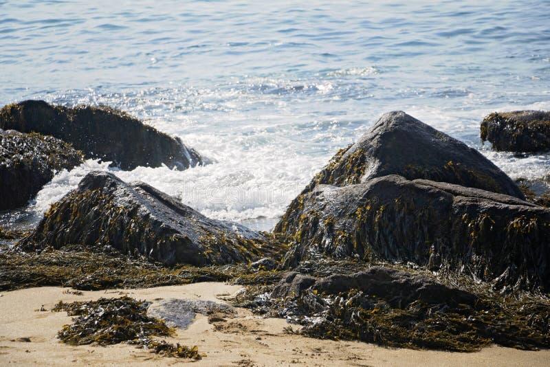 Piasek plaża, Acadia park narodowy, Prętowy schronienie Maine zdjęcie stock