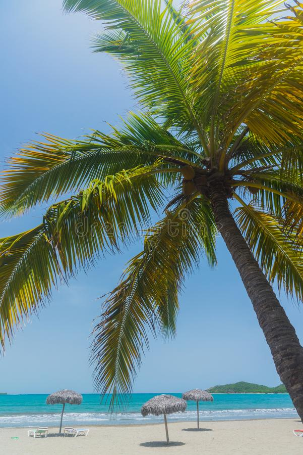 Piasek plaża w Kuba obrazy royalty free