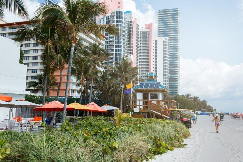 Piasek pla?a w Miami, Atlantycki ocean niebieskie niebo, palmy, drapacz chmur przy t?em zdjęcia stock