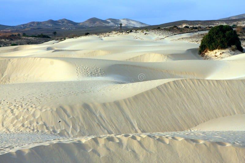 Piasek pustynia zdjęcie royalty free