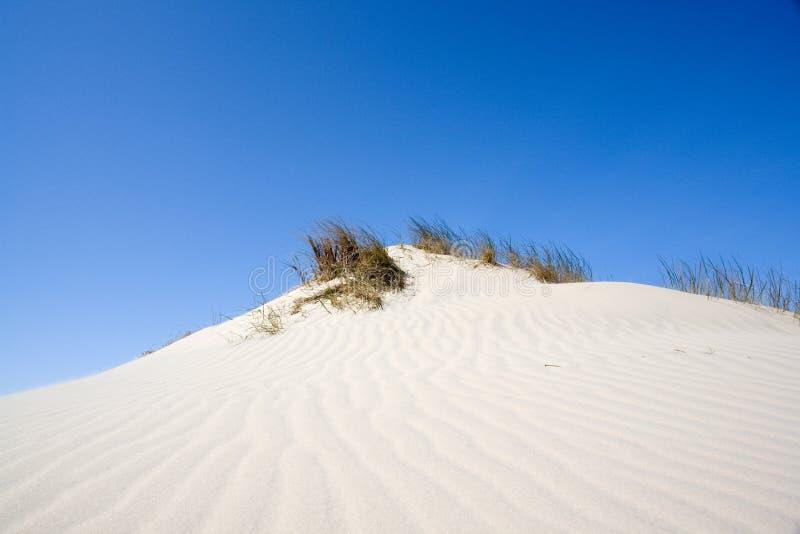 piasek wydm zdjęcie stock