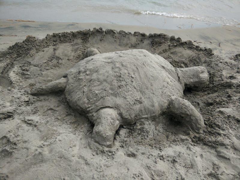 Piaska żółw plażą obrazy royalty free