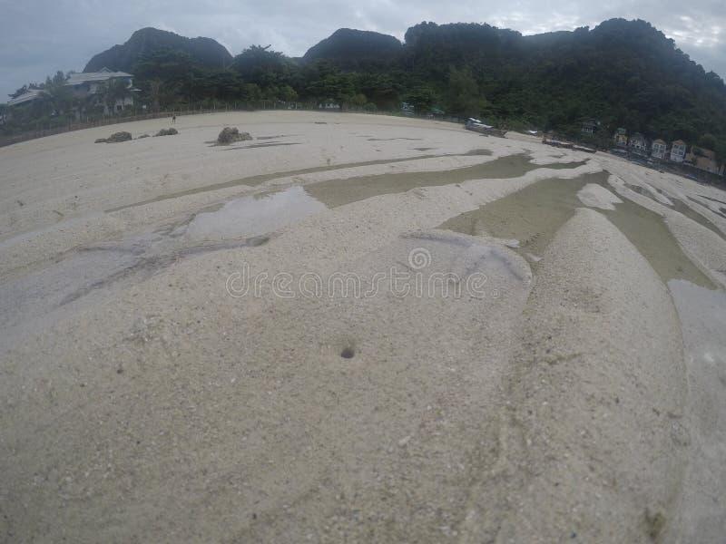 Piaska koloru rozgwiazdy phi phi wyspa zdjęcie stock