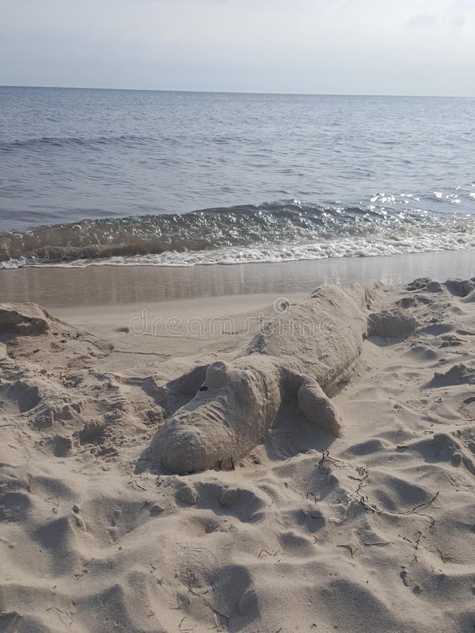 Piaska krokodyl na plaży zdjęcia royalty free