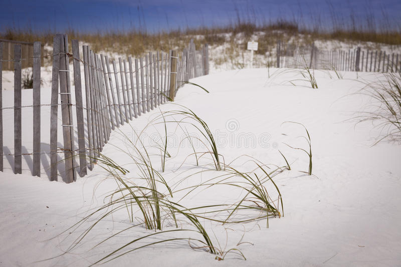 Piaska ogrodzenie przy plażą i diuny zdjęcie royalty free