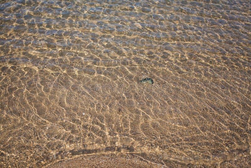 Piaska tła tekstura pod wodą Przejrzysta wodna czochra, piasek fala i światła słonecznego świecenie, Dennego dna tło fotografia royalty free