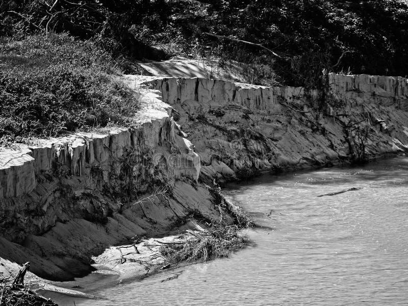 Piaskowata zatoczki linia brzegowa Po Ważnej powodzi - B&W fotografia stock