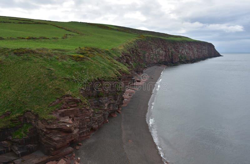 Piaskowatej plaży i Czerwonego piaskowa Denne falezy wzdłuż wybrzeża Fleswick zatoka fotografia stock