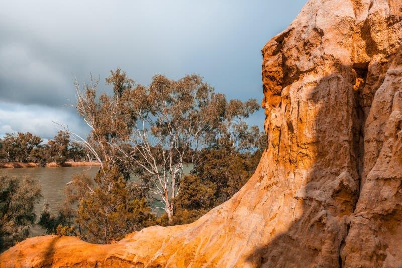 Piaskowiec żlobi falezy i gumowych drzewa zdjęcie royalty free