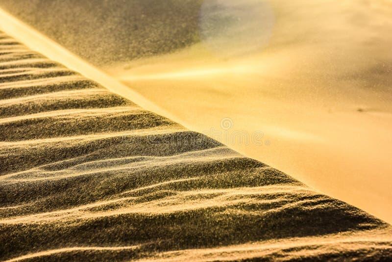 Piaskownice na pustyni obrazy royalty free