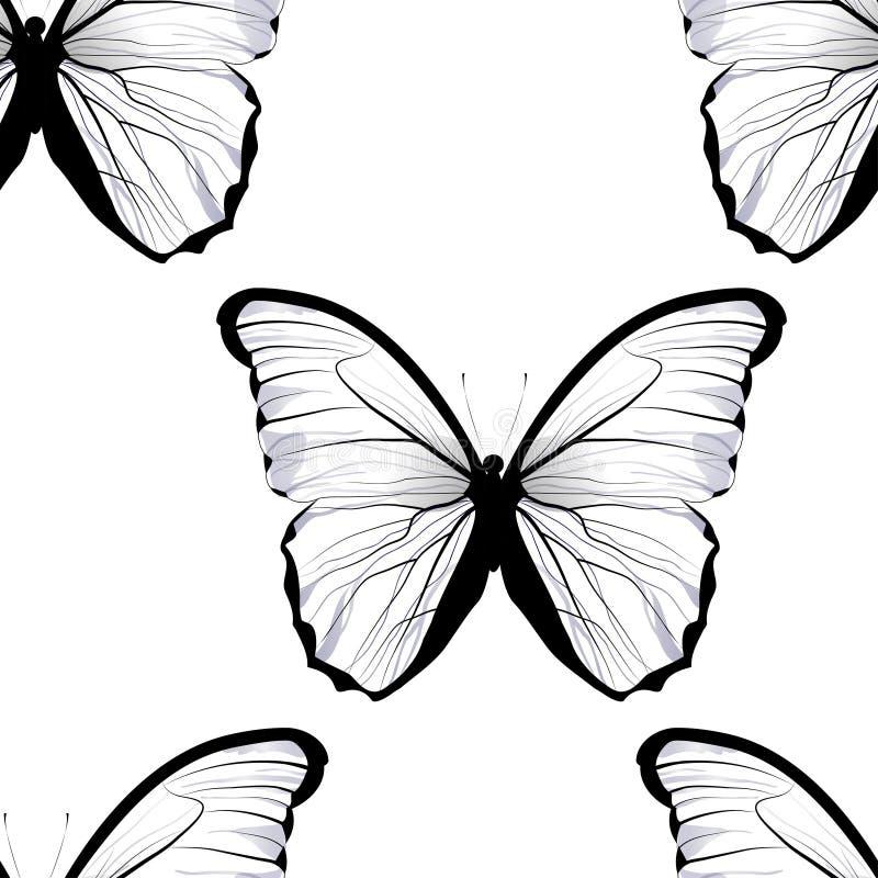 Piastrellatura senza cuciture che ripete il modello di farfalla illustrazione vettoriale